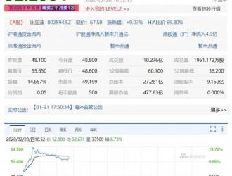 比亚迪A股涨停 港股一度涨幅逾13%