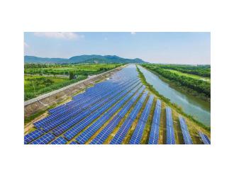 电网企业参与碳市场发展 助力能源低碳转型